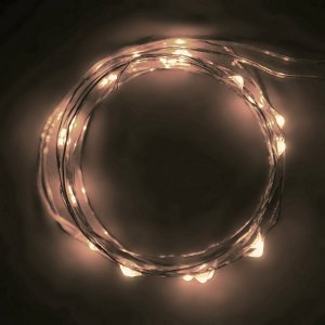Ultra Thin Wire LED Lights | AllFreeChristmasCrafts.com