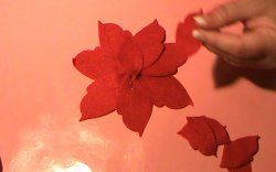 How to Make a Poinsettia Flower-1