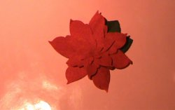 How to Make a Poinsettia Flower-2