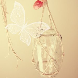 Hanging Glass Butterfly Feeder