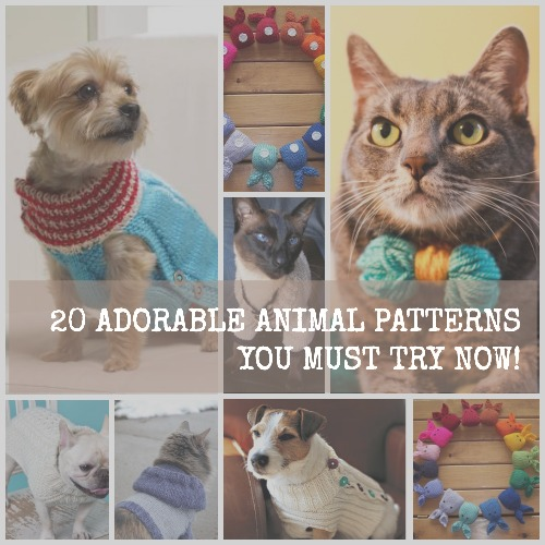 How to Knit a Dog Sweater + 10 More Adorable Animal Patterns