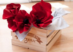 Red Poppies Flower Tutorial and Napkins