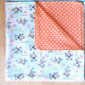 Reversible Receiving Blanket