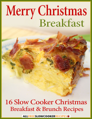 Slow Cooker Ideas for Christmas: 386 Slow Cooker Christmas Recipes ...