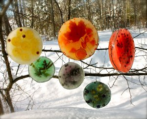 Rainbow Sun Catchers