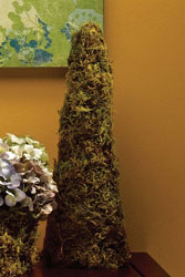 Moss Cone Decoration
