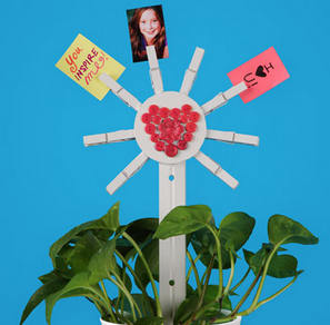 Clothespin Flower Photo Display