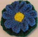 Blue Daisy Flower