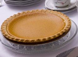 Yogurt Pumpkin Pie