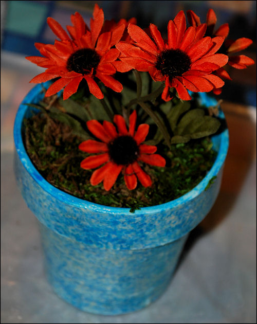 Complete Flower Pot Gift