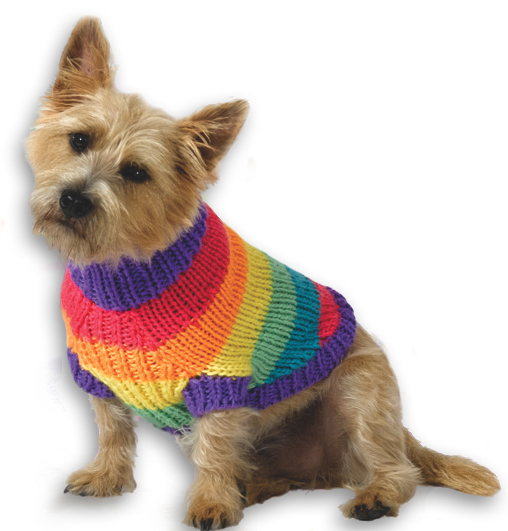 Free Knitted Dog Patterns : 39 Patterns for Pet Clothing and More Pet Crafts FaveCrafts.com
