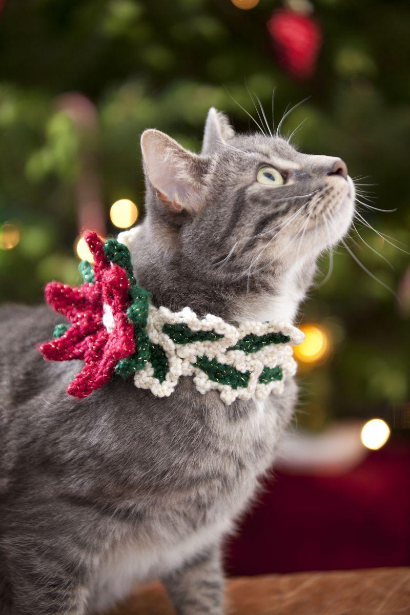 holiday cat collar favecraftscom