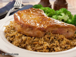 Pork casserole recipes with rice