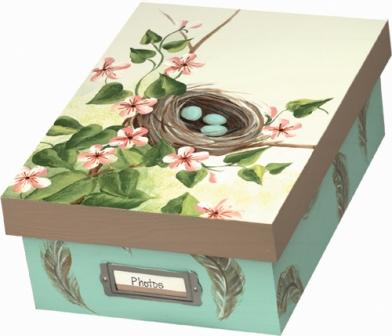 Bird's Nest Photo or Memory Box