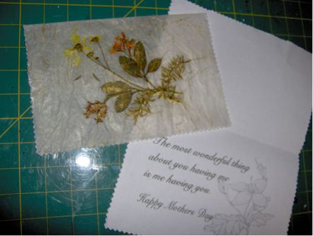 Antique any occasion pressed flower card favecrafts inside and outside of card mightylinksfo