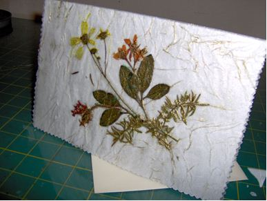 Antique any occasion pressed flower card favecrafts pressed flower card mightylinksfo