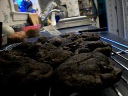 100 Favorite Christmas Cookie Recipes Santas Wishlist Recipelion Com