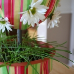 Grass in Daisy and Fabric Topiary