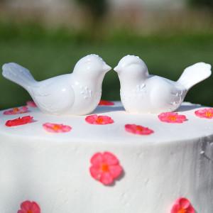 Peace And Harmony Lovebirds Cake Topper Allfreediyweddings Com