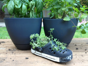 Recycled Crocs Planter